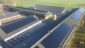 Foto zonnepanelen bovenaf 2
