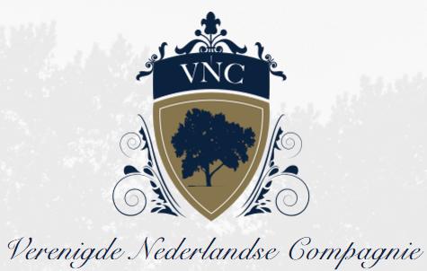 logo vnc