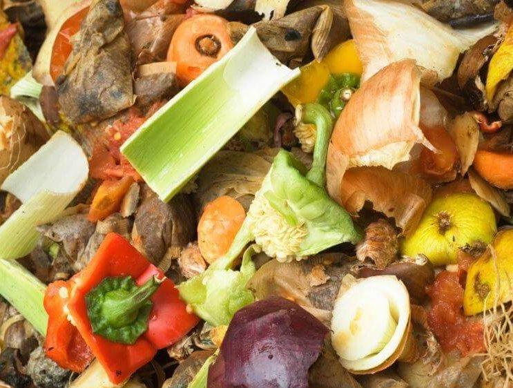 Restproducten voor de opwekking van bio energie