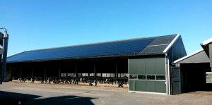 zakelijke energie: Melkveehouderij van Eck